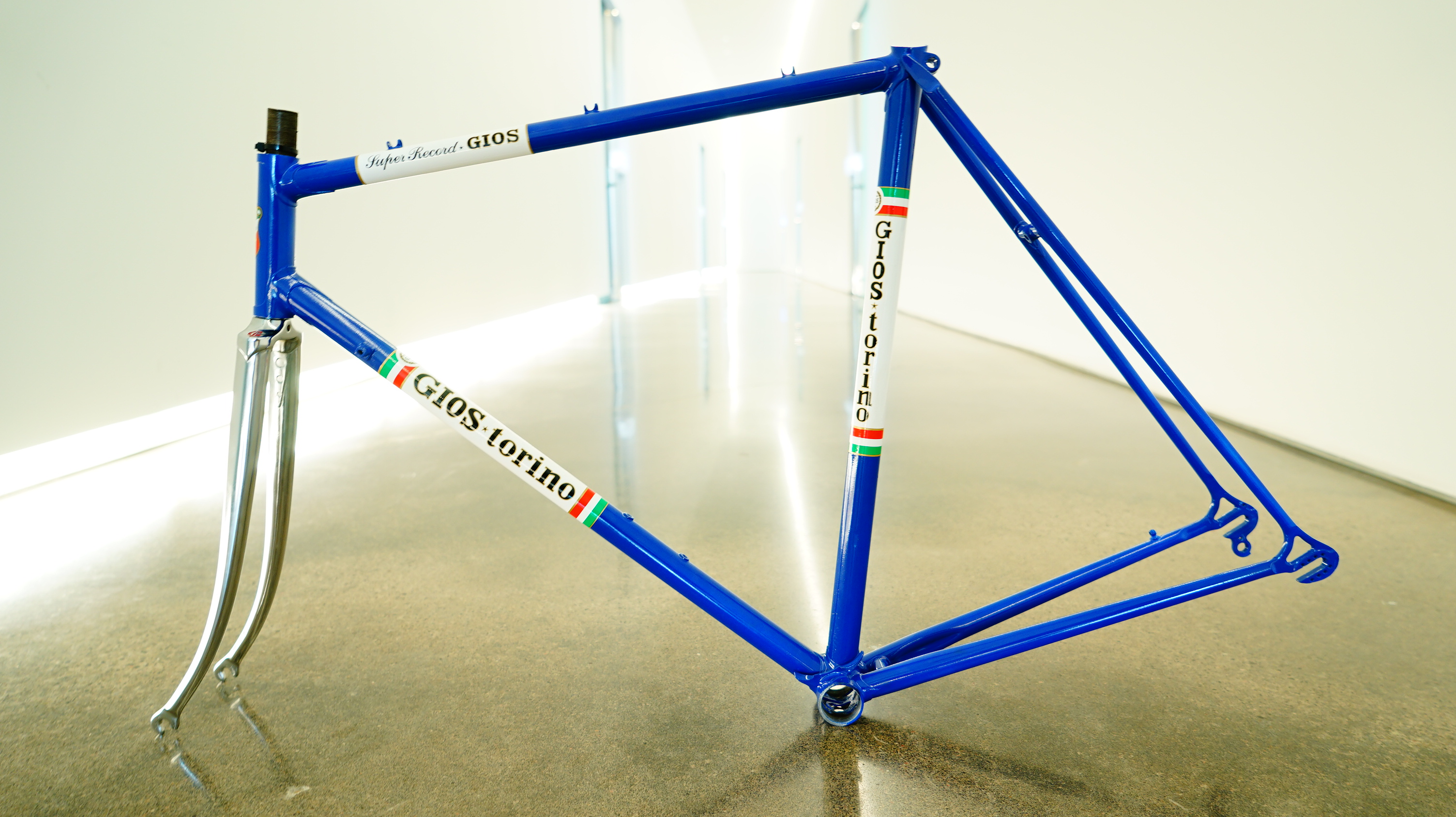 Gios Torion Frame for Sale!! 55 56cm. | pedalpusher